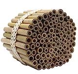 Super Idee 100 Stück 10cm Länge Bambusröhrchen für...