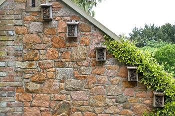 Insektenhotel Hauswand