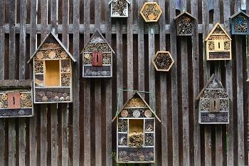 Insektenhotel Höhe