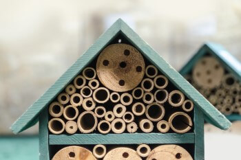 Bambusröhrchen Insektenhotel