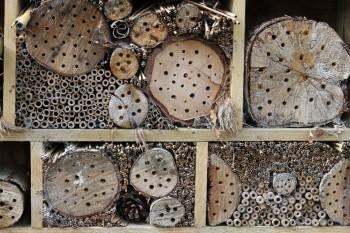 Insektenhotel Löcher Größe