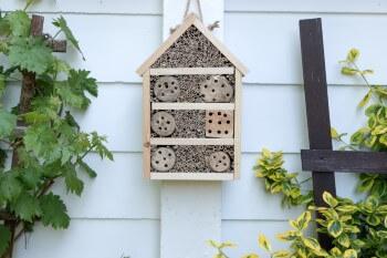 Insektenhotel Hausmauer
