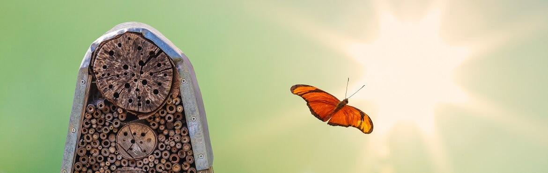 Insektenhotel Sonne oder Schatten