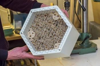 Insektenhotel Tiefe