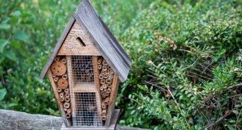 Insektenhotel auf dem Balkon