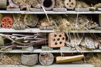 Insektenhotel Material