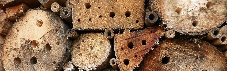 Löcher Bohren Insektenhotel