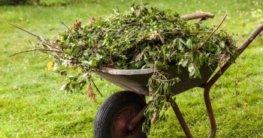 material für insektenhotel sammeln
